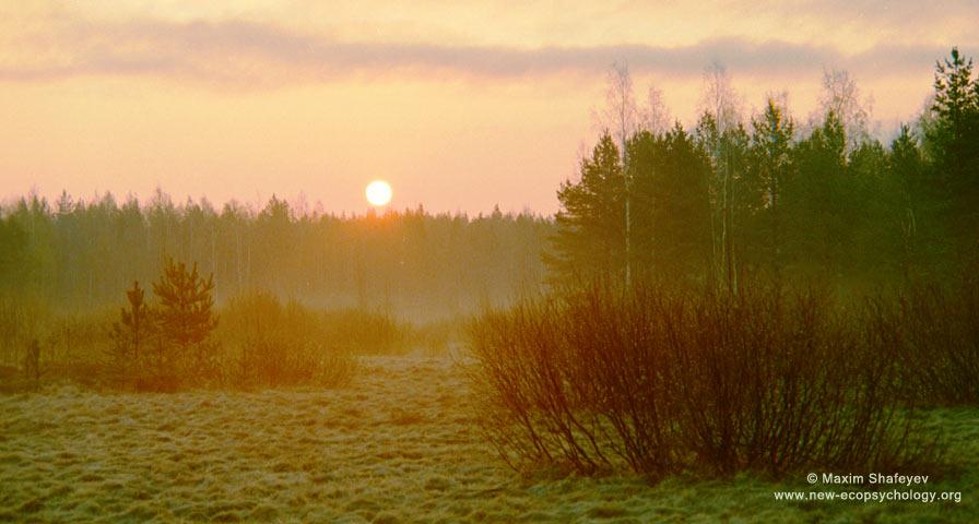 Magic of morning